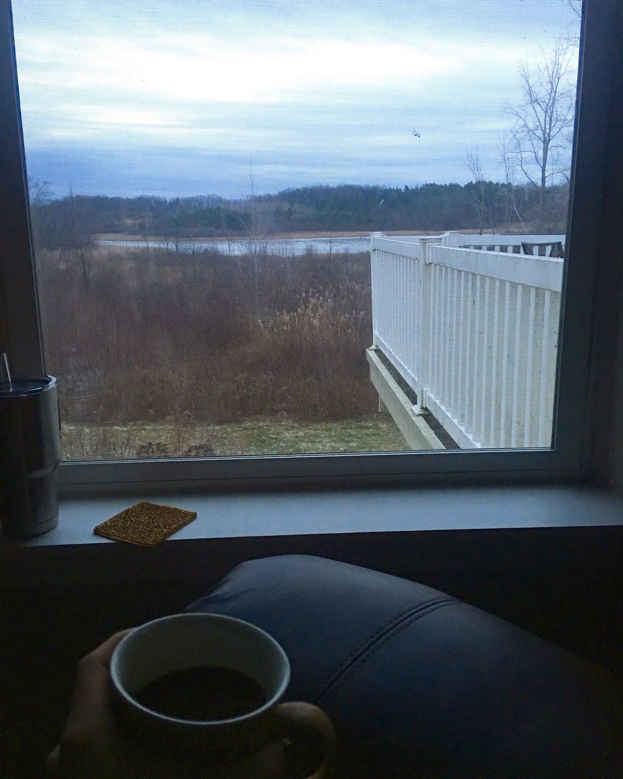coffee date with myself in Michigan 2017