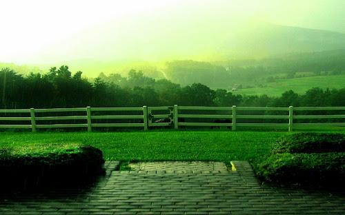 Gambar Suasana Hujan Terbaru