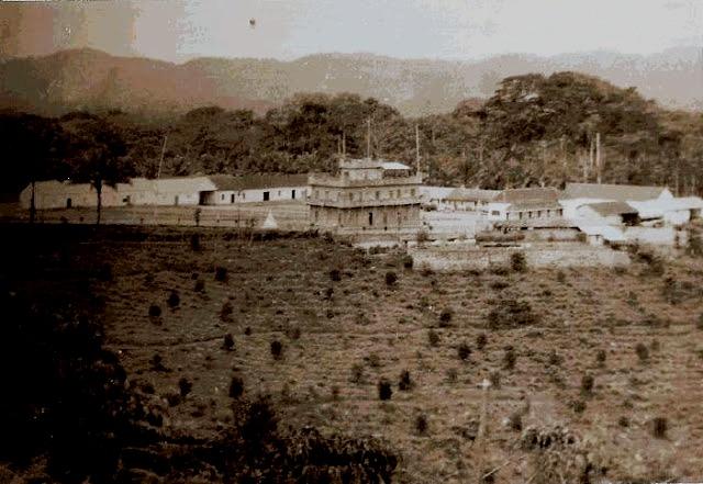 PEREIRA, DE SANTA ISABEL,  63 ANOS EM LISBOA