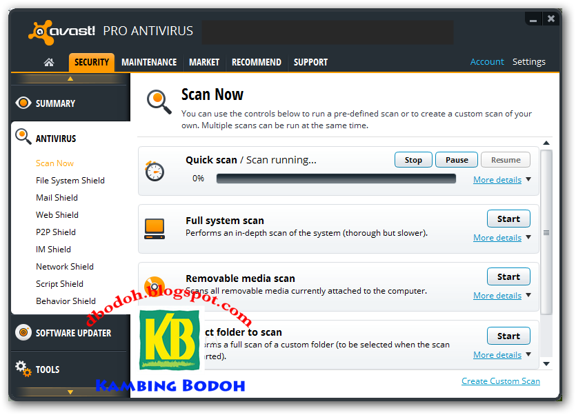 Avast antivirus professional full version
