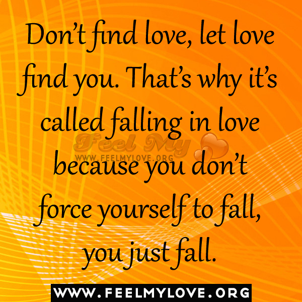 dont find love let love find you quotes Do you know how much i love you i don't which are only caused by the immense love i feel for you my darling, let's go back to the motivational quotes.