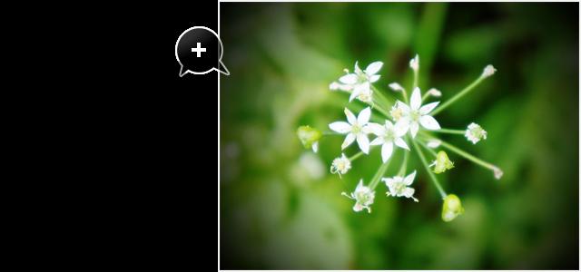 GIMP2の使い方 | フリー素材配布:写真の周りを暗くする