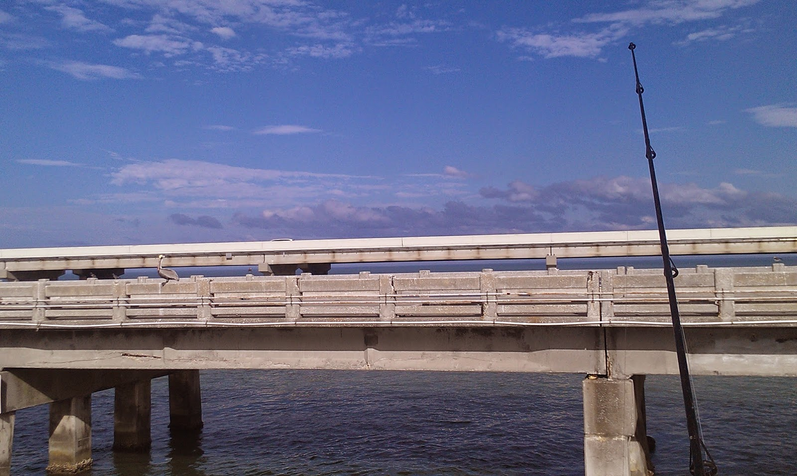 Nolden usa sunshine skyway fishing pier st petersburg for Tides 4 fishing skyway