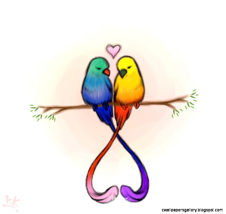 Love Bird Drawings In color Wallpapers Gallery