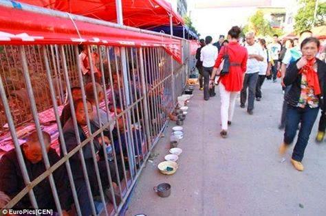 هل تعلم لماذا يقوم الصينيون بحبس هؤلاء داخل الأقفاص في كل شوارع الصين !!!