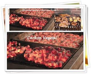 carbon-vegetal-venta-maderas-cuale-vallarta-bahia-banderas