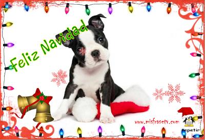 Mi Mejor deseo para esta Navidad - Tarjeta de Navidad para Etiquetar en Facebool