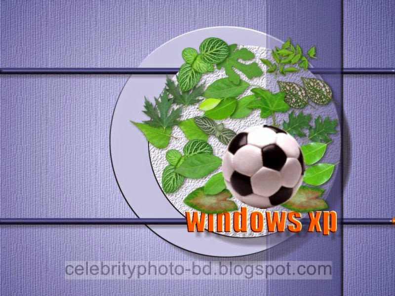 Latest%2BWindows%2BXP%2BWallpapers%2BHD%2BCollection052