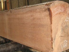 harga kayu keruing