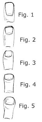 5 Forme e profili di unghia