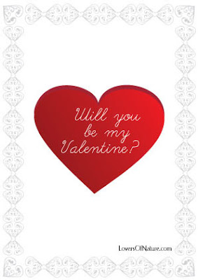 I Love You-Will You be My Valentine