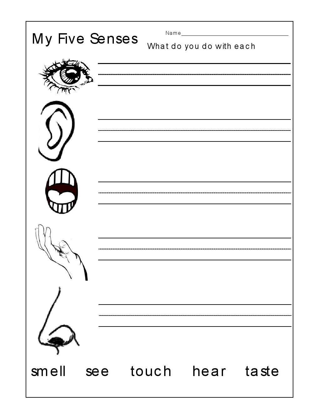 Worksheets Five Senses Worksheet For Kindergarten kindergarten worksheets the 5 senses worksheets