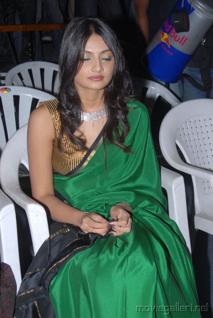 1 - Nikitha Narayan Hot Pics in Green Saree
