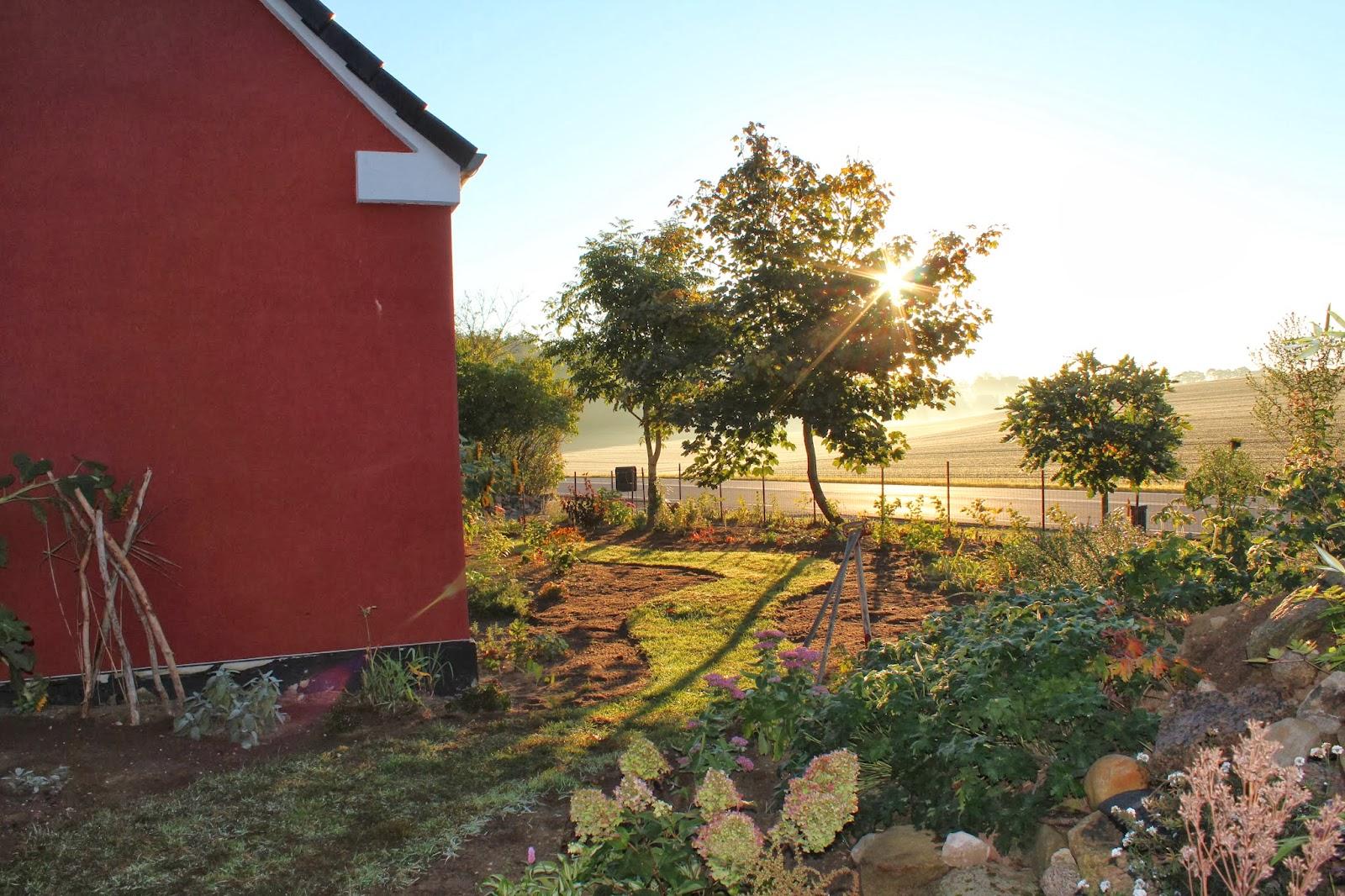 Anettesflora: kaffe i det fri, haveplan og hjerter på rionet