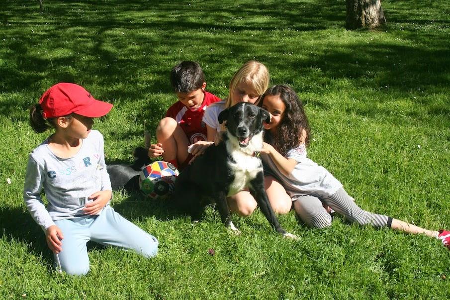 Nasco y sus amigos