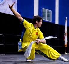ashim blog, seni bela diri tradisional, bela diri terkenal, bela diri mendunia, bela diri, sabung, membela diri, wushu