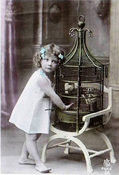 Sweetly Singing Friends #antique #photograph #bird