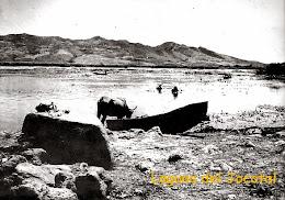Laguna del Jocotal