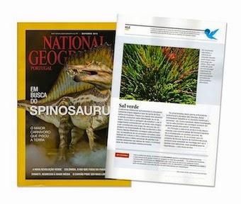 Colaboração na National Geographic de Outubro com artigo sobre a planta salicórnia