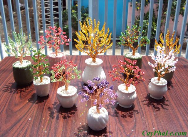 Vườn cây pha lê trong nắng