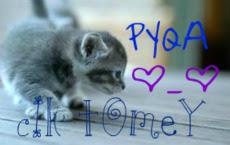 ~Pyqa