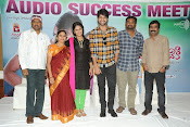 lakshmi raave maa intiki audio success meet-thumbnail-16
