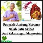 Penyakit Jantung Koroner Salah Satu Akibat Dari Kekurangan Magnesium
