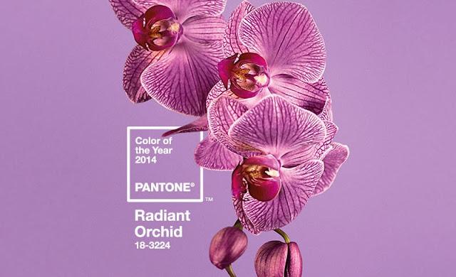 Radiant Orchid kolor roku 2014
