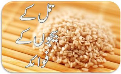 sesame seeds oil benefits in urdu