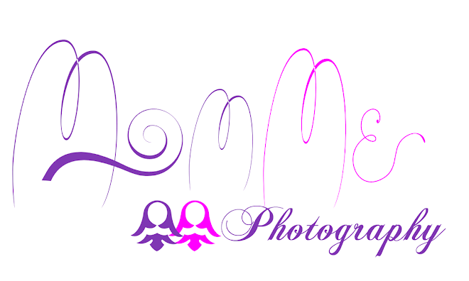 Our Photography Page