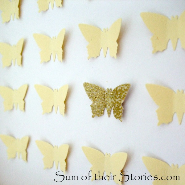 Specimen Butterfly Art