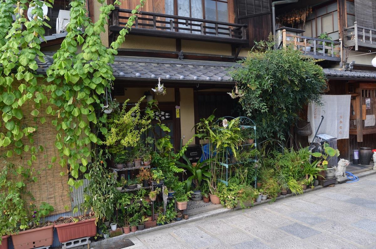 Noel 39 s garden blog a hard look at the japanese garden for What is a courtyard garden