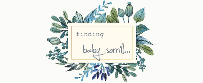 Finding Baby Sorrill