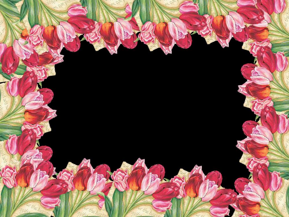 5 Marcos de Flores PNG Distintos diseños. | Marcos Gratis para ...