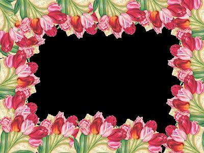 marcos de flores png