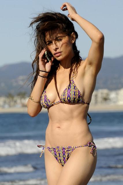 Sarah Shahi bikini picture