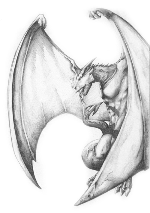 Drawing Of Dragon For Tattoo
