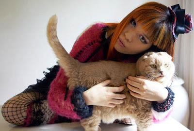 Cewek Jepang dengan kucing Scottish Fold peliharaannya