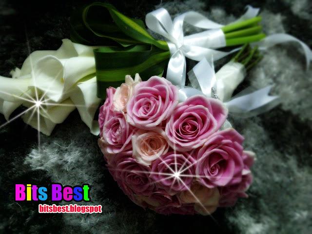 Bunga Tangan BB