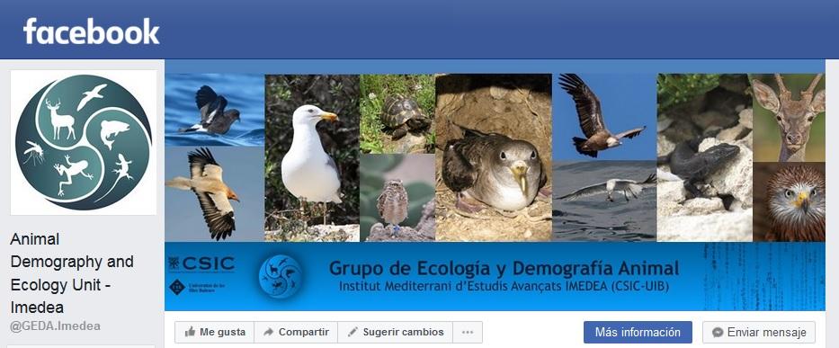 ..or Facebook !