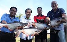 Pelepasan Ikan