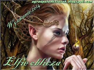 http://ogrodpelenksiazek.blogspot.com/p/wyzwanie_5.html