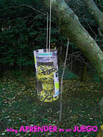C mo hacer un comedero para p jaros casero con material for Bebederos para aves jardin