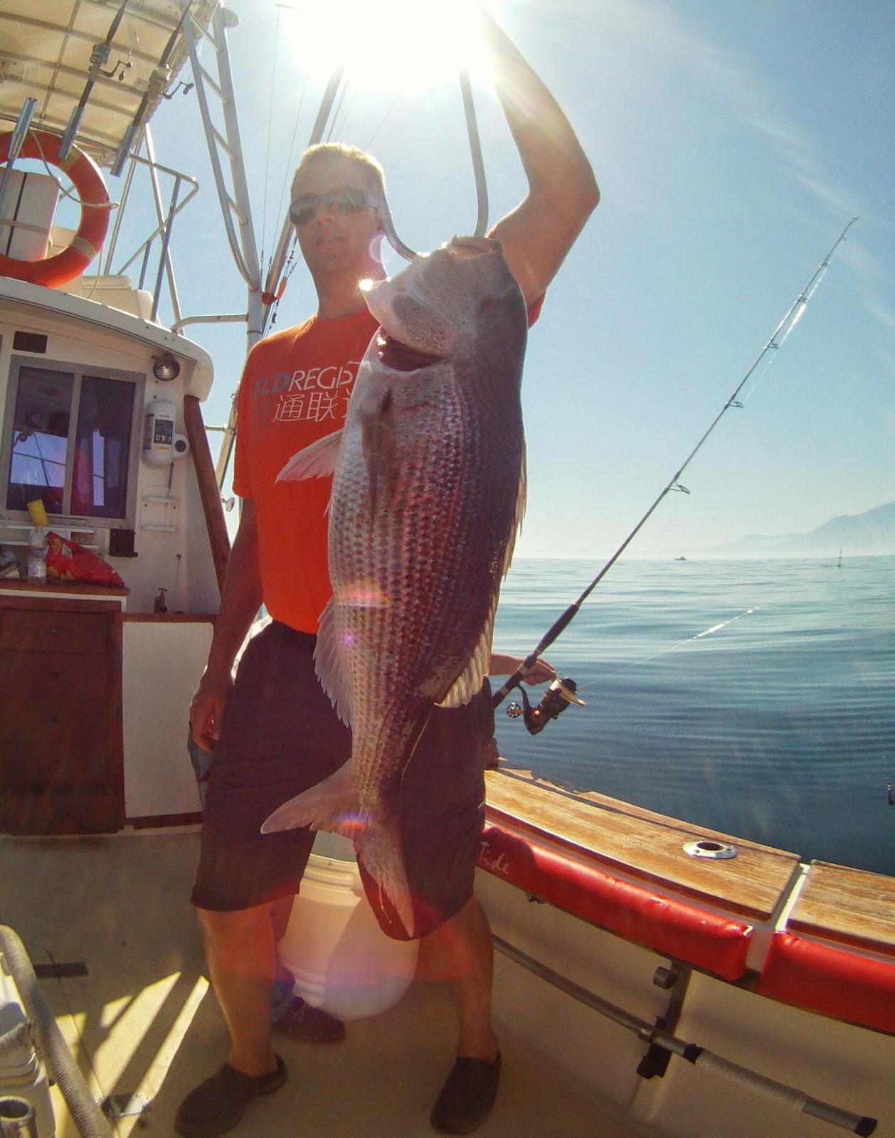 Pesca en Marbella. Pesca en barco.