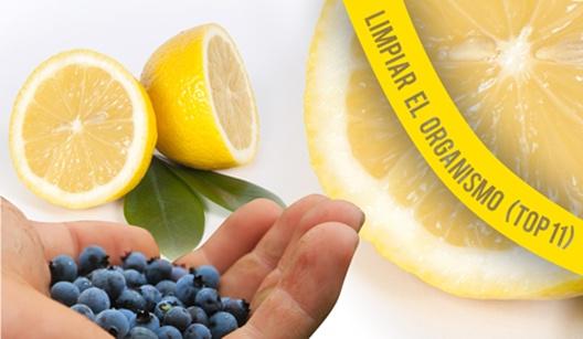 alimentos que limpian el organismo de toxinas