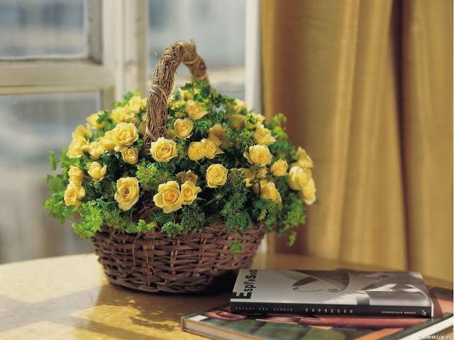 Hình ảnh hoa đẹp 05
