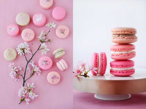 Cherry blossom macarons from Cannelle et Vanille