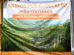 """SE PIERDEN 32 HECTAREAS DE """"PEÑA COLORADA"""""""