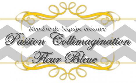 J'ai fait partie de l'équipe créative de :