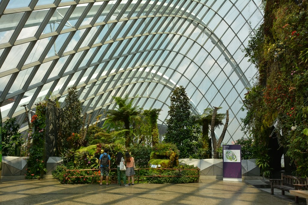 Cloud Forest Singapore glass ceiling